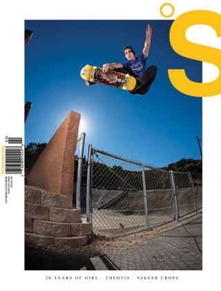covers - The Skateboard Mag, February 2014